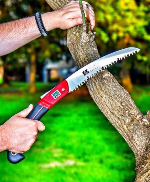 red wow saw cutting tree graphic
