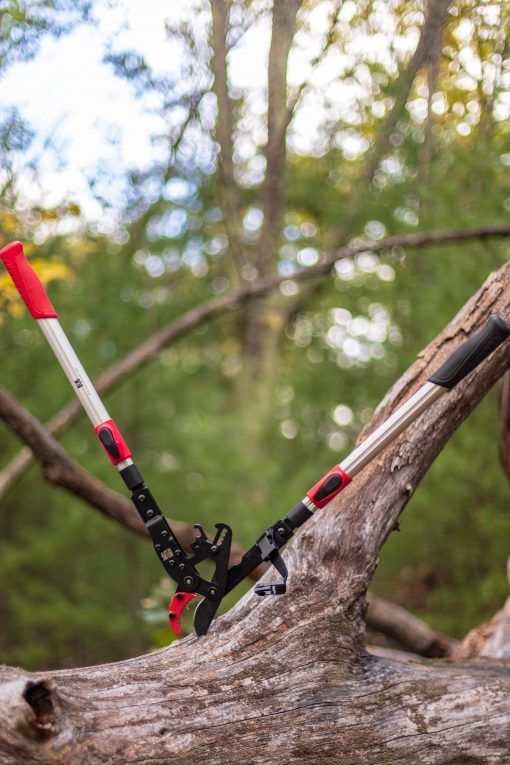 Ratcheting Lopper red in tree